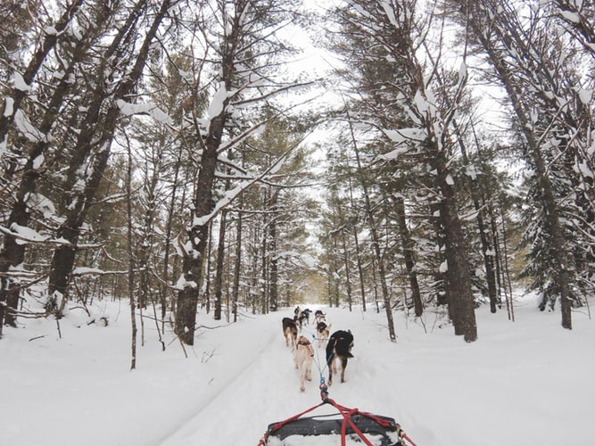 fun things to do in the winter