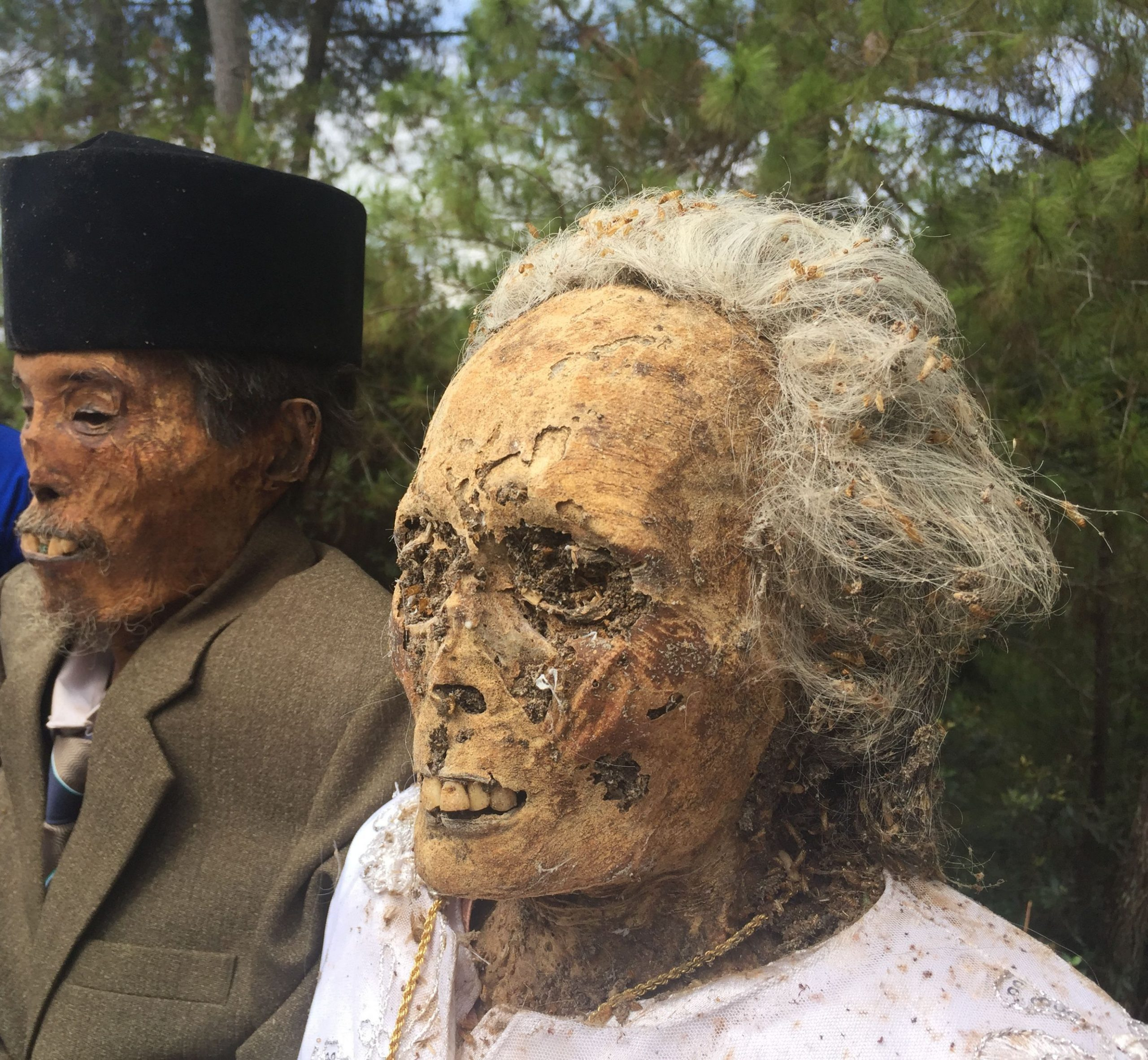 Death Culture among Torajans: Where Death is Part of Life, Not the End of It