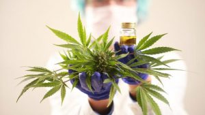 Study shows that cannabis combats stress, anxiety and depression, Cannabis Good For Your Body