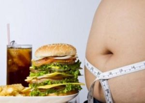 The science of junk food
