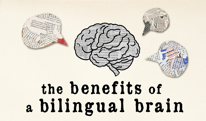 Speaking More Than One Language Improves Your Brain Capability