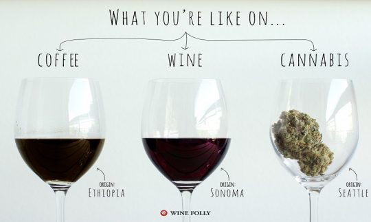 Is Consuming Coffee, Wine And Cannabis Good For Your Body?