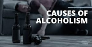 The Causes Of Alcoholism - genetics, environment, mental