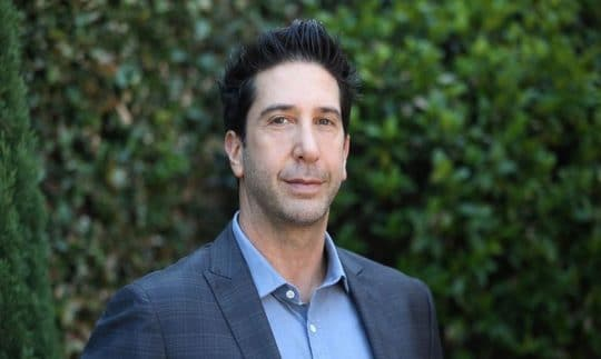 David Schwimmer: 5 Facts To Know About Ross Geller Of The NBC Sitcom Friends