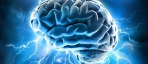Cognitive Performance Increases