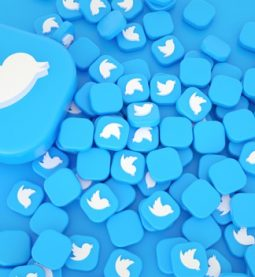 embed twitter feed tools