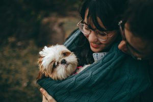 White and Tan Shih Tzu Puppy Carrying by Smiling Woman
